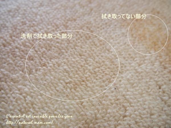 オールシングインネイチャー洗剤でカーペットの汚れを落としてみました