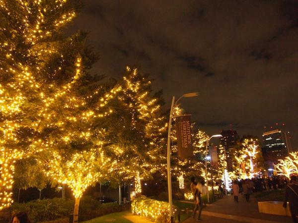 東京ミッドタウンイルミネーション街路樹