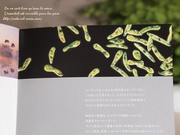 ミドリムシ化粧品のユーグレナコスメ