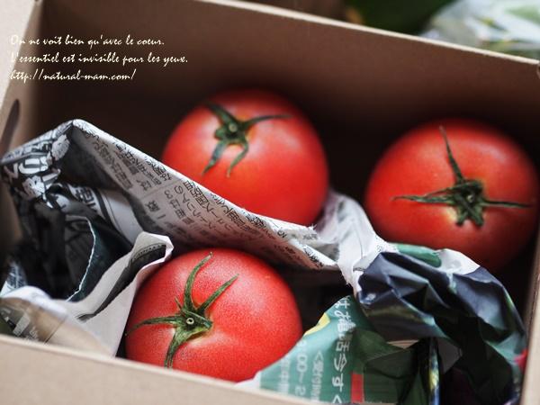 大地を守る会お試しセットの箱入りトマト