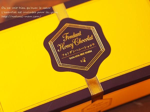 Fondant Chocolat1