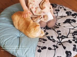 子供と猫がせんべい座布団に座ってみた