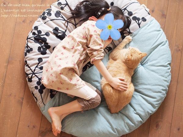 幼児と猫とせんべい座布団